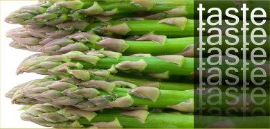 Asparagus Field Trip
